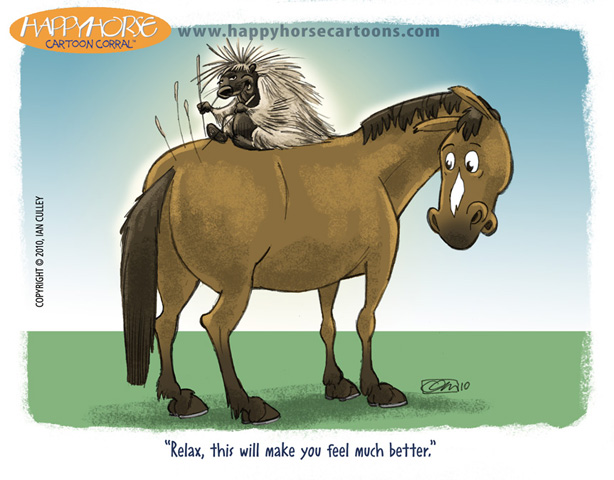 horse-cartoon