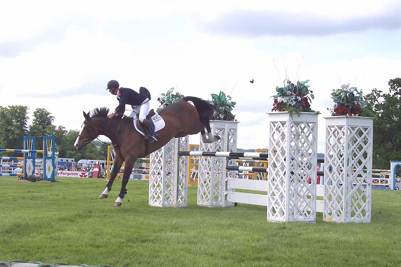 Jump%20Oxer%202