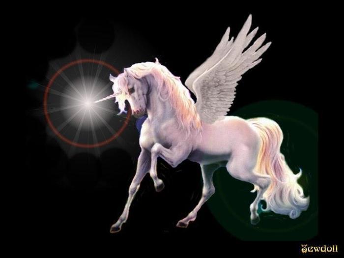 3154717_unicornt