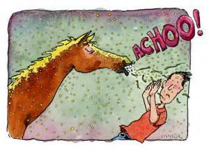 horse-saying-achoo_f_improf_300x216