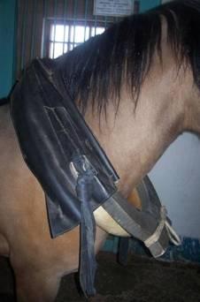 Что одевают лошади на шею деревянную