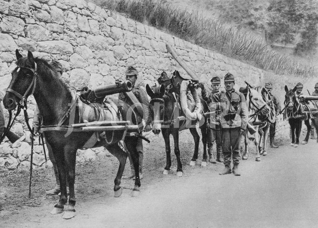 1029849-world-war-i-1914-1918-austro-hungarian-soldiers-with-pack-horses-carrying-guns