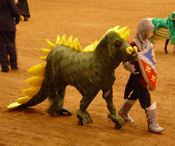 Costume-UnicornerFarm-Dragon