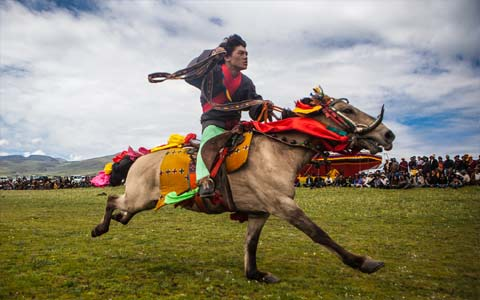 Cellphone-10-Days-Litang-Horse-Racing-Festival-Tour