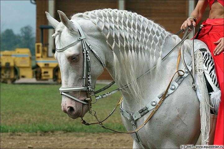 Как сделать гриву для лошади фото 844